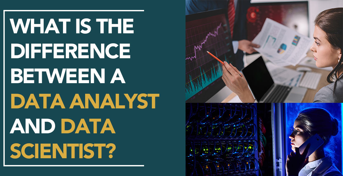 What is the difference between a Data Analyst and Data Scientist